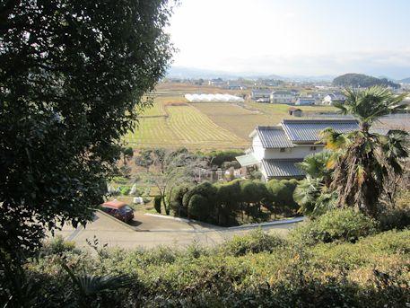 珠城山1号墳石室からの眺め