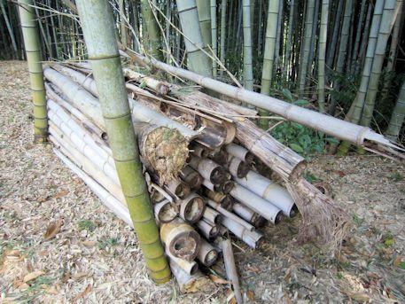 東大寺山古墳の竹