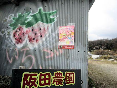 阪田農園のイチゴ狩り