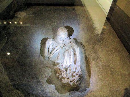 土壙墓の人骨