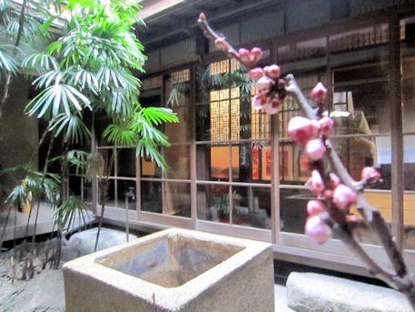 旧川本邸の中庭