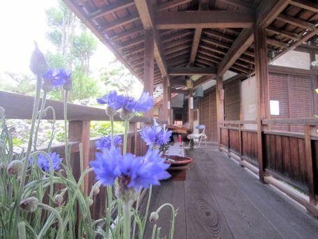 璉珹寺の渡り廊下