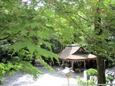 新緑と大神神社手水舎