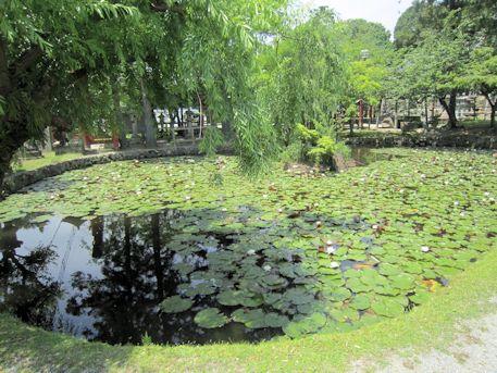 氷室神社の池