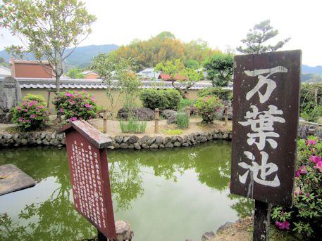 飛鳥寺の万葉池