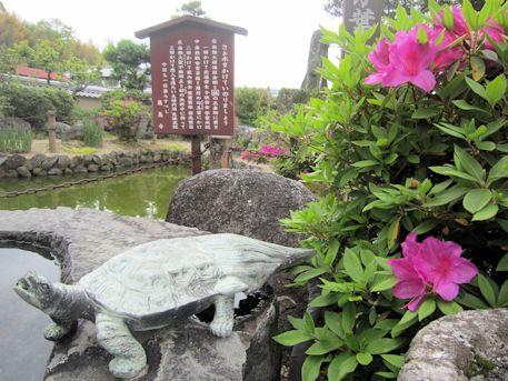 飛鳥寺の蓑亀