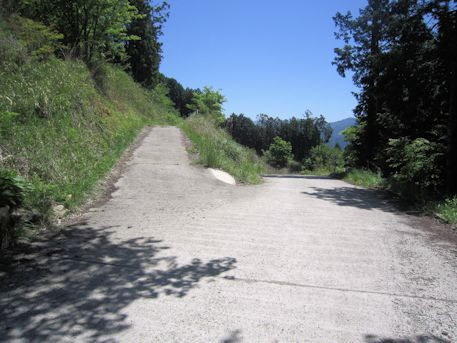 鳥見山公園のアクセス道