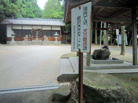 犬の散歩禁止