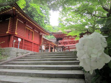 紫陽花と談山神社西宝庫