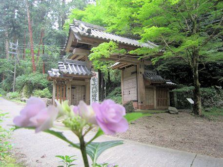 談山神社東大門と紫陽花