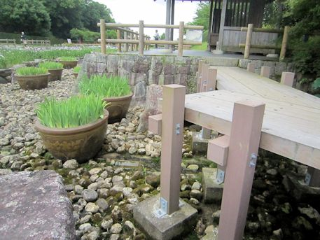 菖蒲園の八つ橋