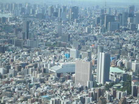 東京スカイツリーから望む両国国技館