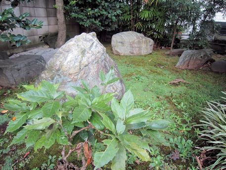 野見宿禰神社の磐座