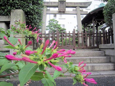 野見宿禰神社鳥居