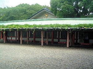山王日枝神社の藤棚