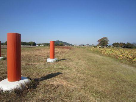 藤原宮跡の柱