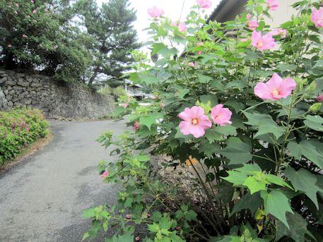 八釣マキト古墳のアクセスルート
