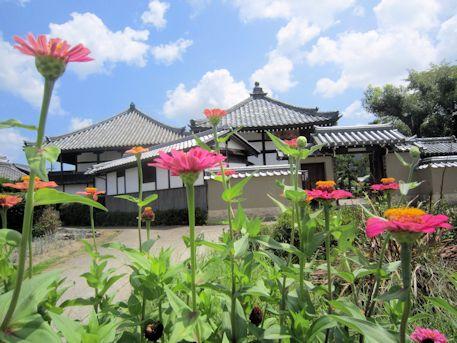 飛鳥寺と夏の花