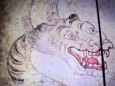 白虎の赤外線画像