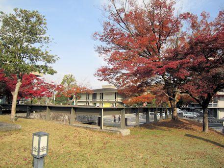 奈良県立美術館と紅葉