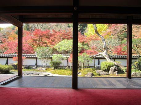 福寿院客殿の紅葉借景