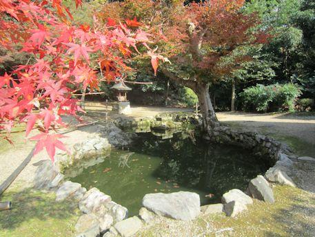正暦寺境内の池