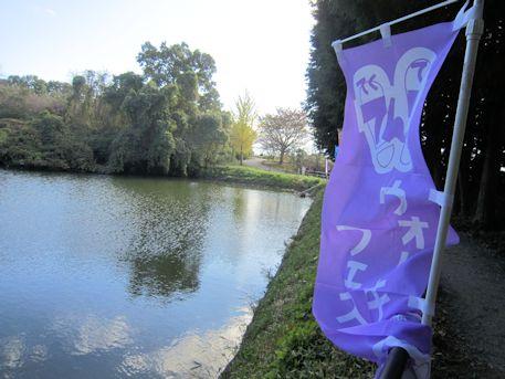 ウォーキングフェスティバルの旗