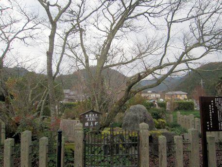 檀上桜と芭蕉の句碑