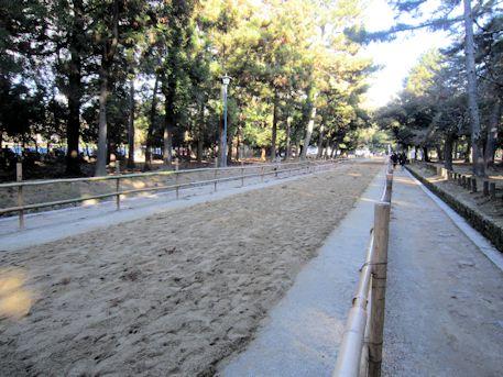競馬の馬場