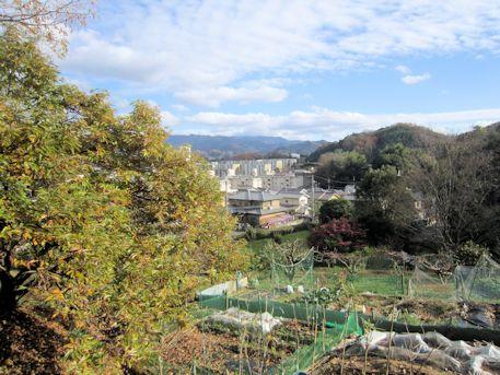 小谷古墳からの眺望