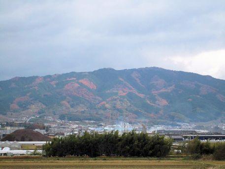 竜王山の眺望