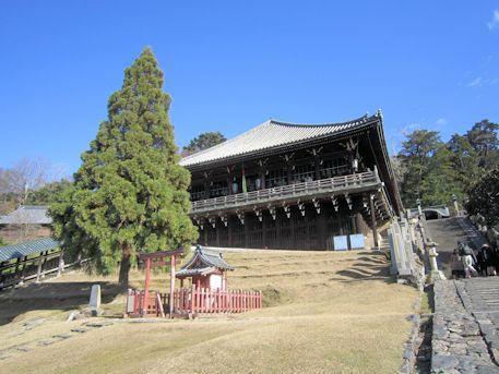 良弁杉と東大寺二月堂