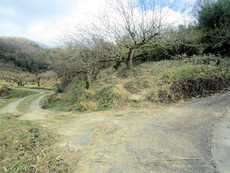 立子塚古墳のアクセスポイント