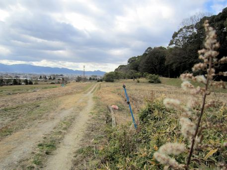 景行天皇陵と二上山遠景