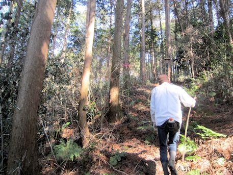 岡の立石のアクセスルートを行く地元民