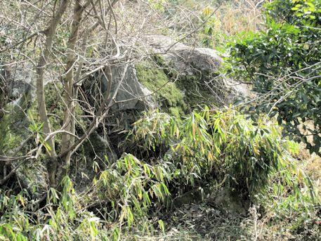 細川谷古墳群の巨石