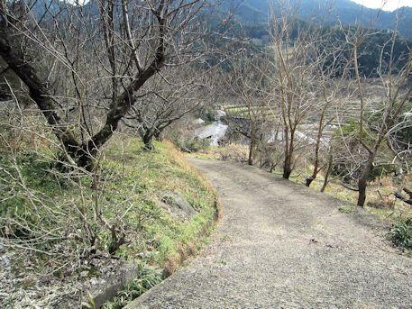 打上古墳のアクセスルート