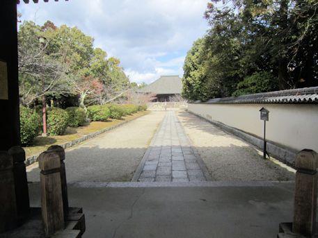 西大寺南門から望む本堂