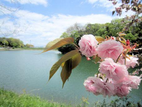 前池と池上古墳