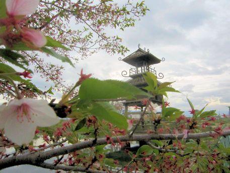 復元楼閣と桜