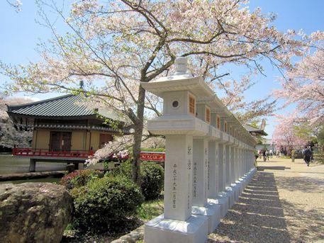 安倍文殊院石灯籠と桜