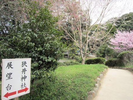 狭井神社の道案内