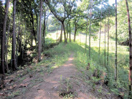 寺崎白壁塚古墳のアクセスルート