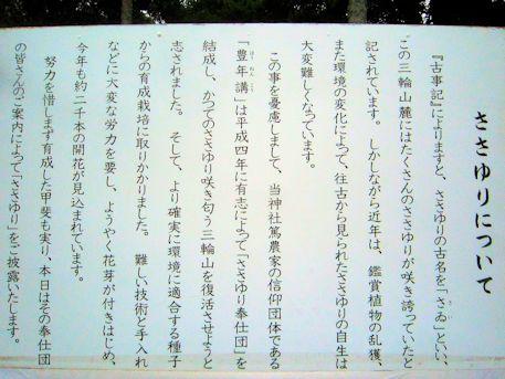 大神神社のささゆり解説