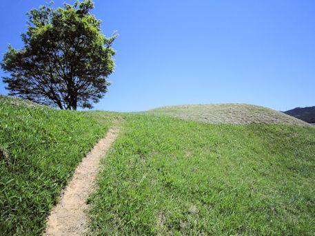 市尾墓山古墳の墳丘