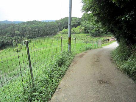秉田神社の帰り道