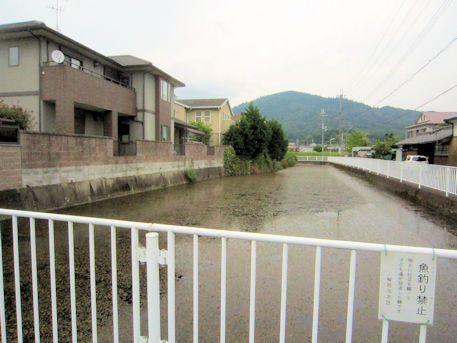 織田小学校南方の濠