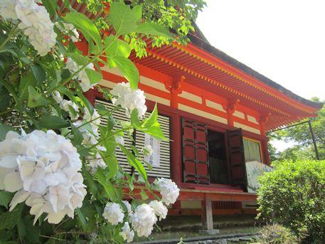 談山神社の紫陽花