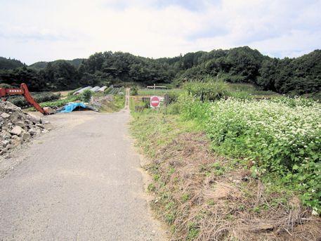 笠地区の道