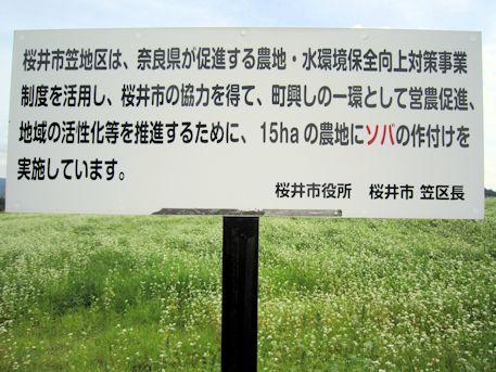 桜井市役所の案内看板